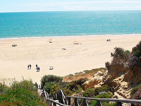 Mi Playa Segura